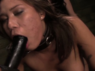 Chained lezdomsub strapon penetrated hard by inexact duo