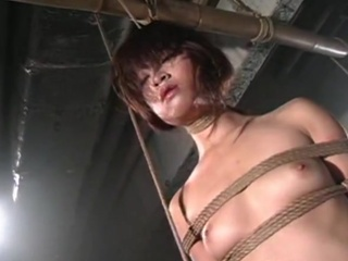 Best Asian Porn movs reversed reach Shibari Dolls