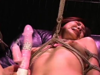 Great collection of Hardcore Coitus movies from Shibari Dolls