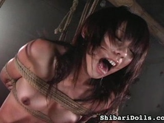 Mix regard favourable for Hardcore Sex vids from Shibari Dolls