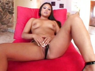 Ashley Marie rubs the brush phat cat