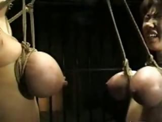 asian bdsm titty hang