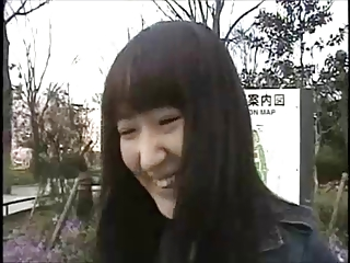Japanese itty-bitty befog 236, 237, 238, 239